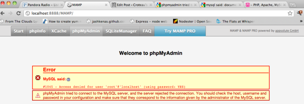 #1045 - Access denied for user 'root'@'localhost' (using password: YES)